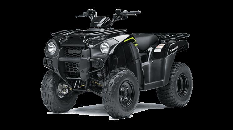 2022 Kawasaki BRUTE FORCE 300